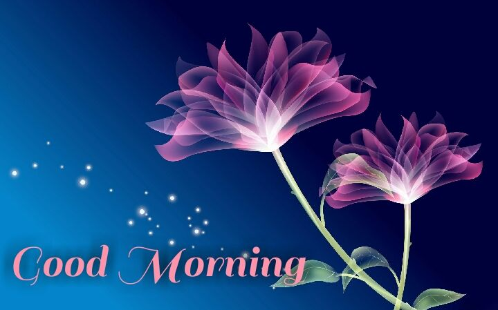blue Lilly good morning images wishes