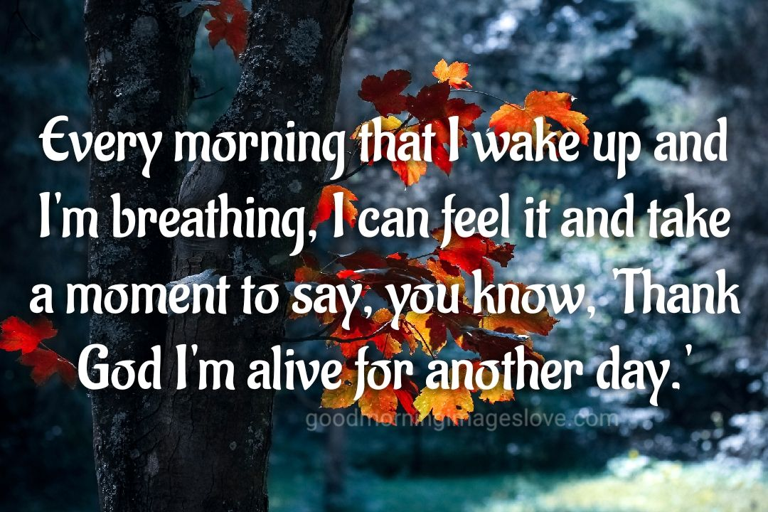 red flower morning messages