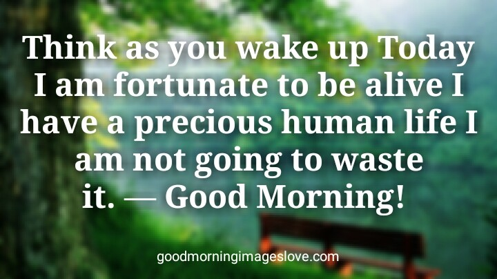 greenery good morning quotes