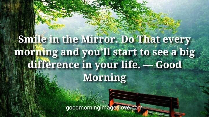 Greenry Morning Pic