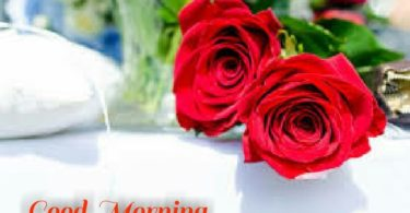 two roses wishes lovely day