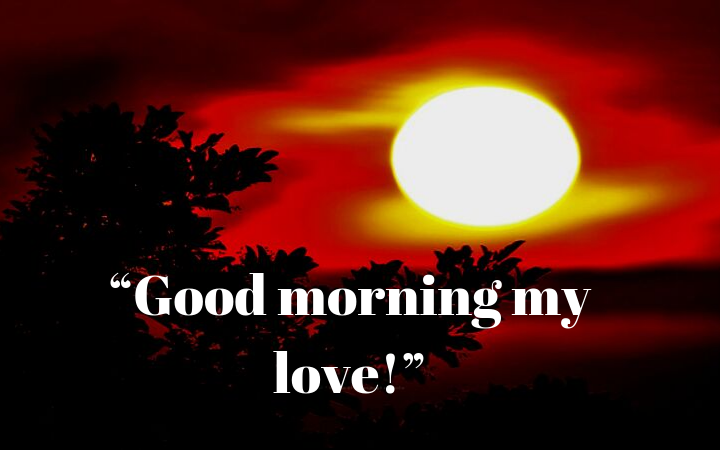 good morning my love goodmorningimageslove