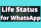 Life Status for WhatsApp