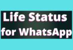 Life Status for WhatsApp